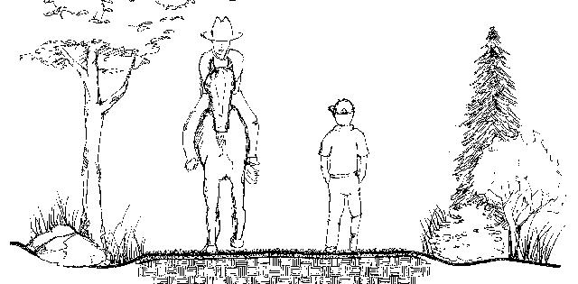 horse station sketch